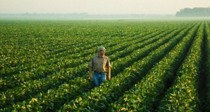 Farmers-With Soybeans